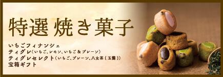 特撰焼き菓子
